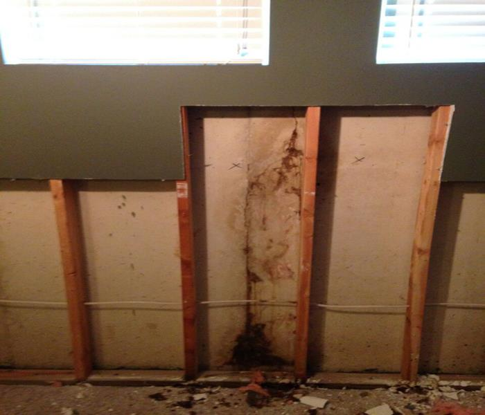 Oakville Mold Damage Before