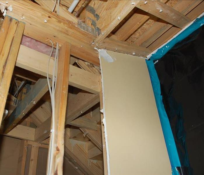 Mold Remediation in Mehlville