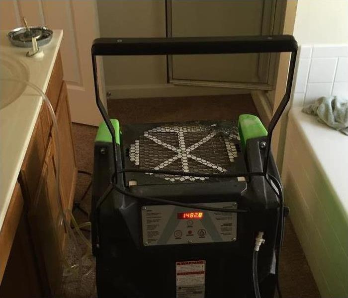 Mold Remediation Help – My Washing Machine Smells!