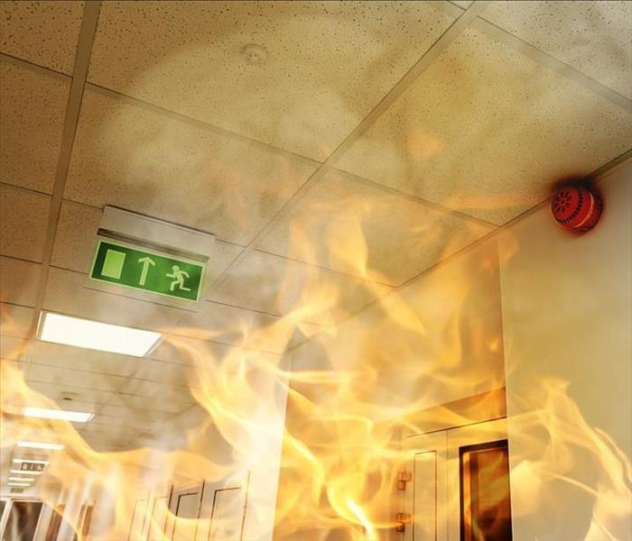 Commercial How To Choose A Commercial Fire Damage Restoration in St Louis