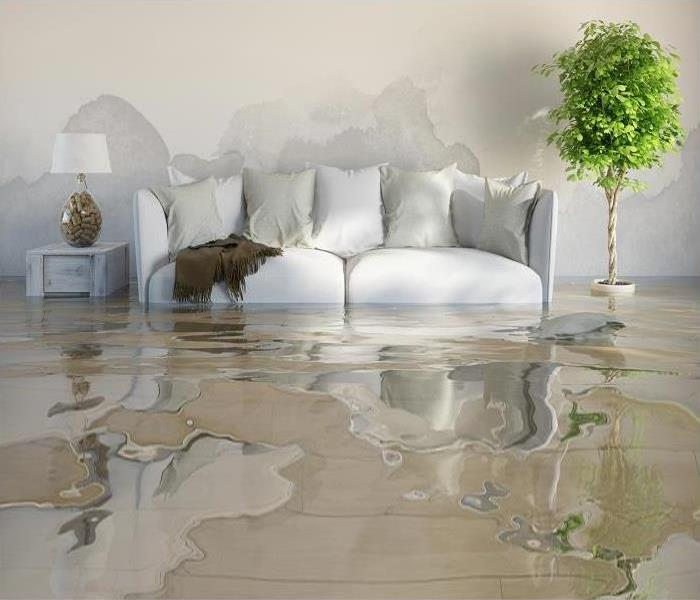Water Damage What to Do in a St. Louis Water Damage Emergency
