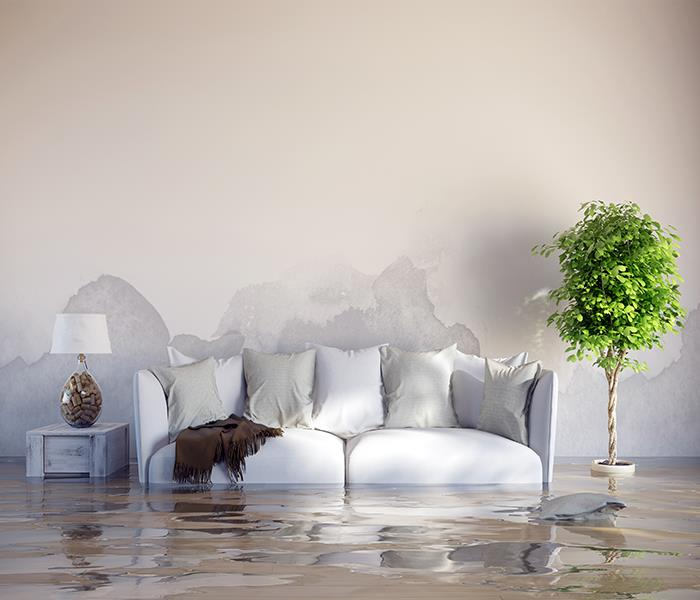 Water Damage Recovering From Flood Damage The Smart Way