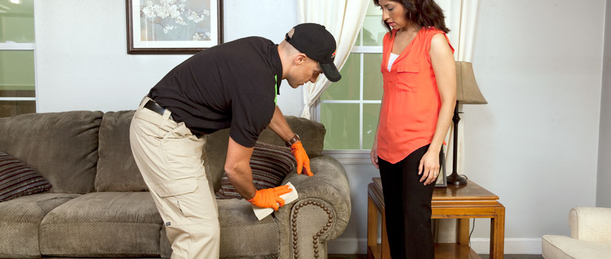 Clayton, MO carpet upholstery cleaning