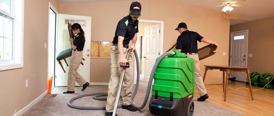 Clayton, MO cleaning services